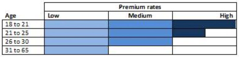 car insurance premium risk profile