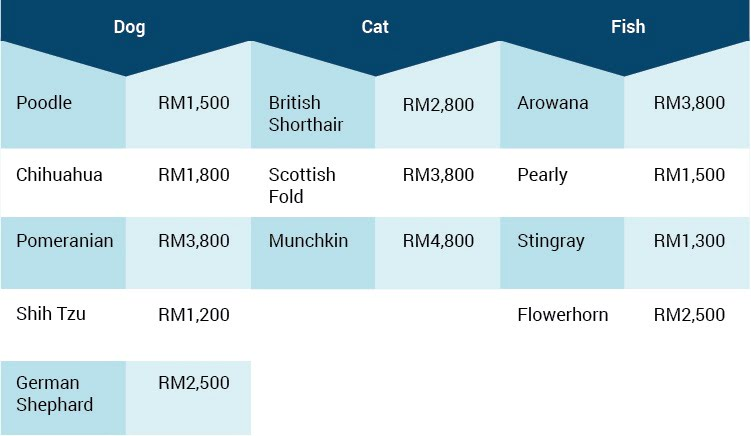 How Much Does It Cost To Own A Pet?
